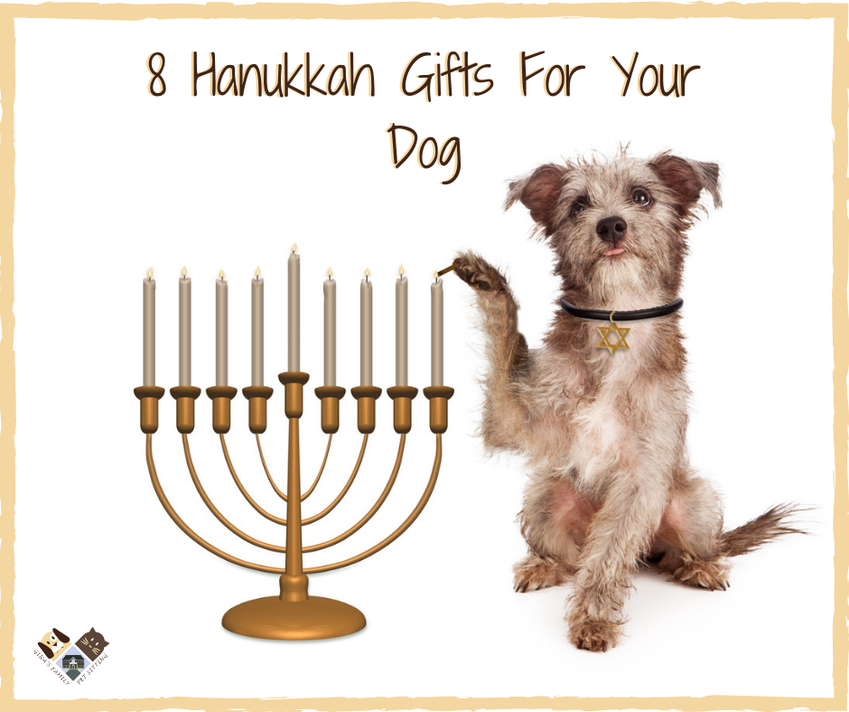 eight hanukkah gifts for your dog